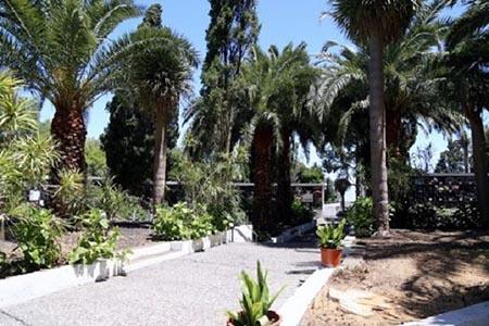 200525 cementerio