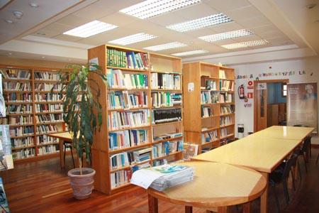 biblioteca valleseco