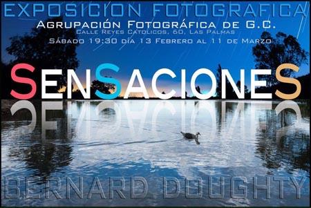 expo foto bernard