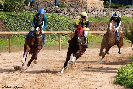 210521 entrenamientos caballos